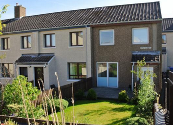 Thumbnail 3 bedroom terraced house to rent in Ravenswood, Forth, Lanark