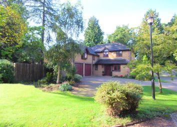 Thumbnail Detached house to rent in Arreton Mead, Horsell, Woking