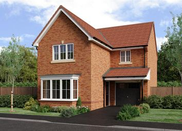 "Thumbnail 3 bedroom detached house for sale in ""Malory"" at Joe Lane, Catterall, Preston"