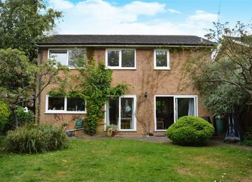 Thumbnail 4 bed detached house to rent in Martingales Close, Richmond, Petersham, Surrey