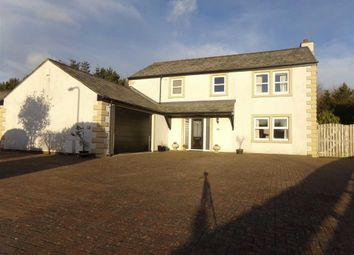 Thumbnail 5 bed detached house for sale in Derwentside Gardens, Cockermouth