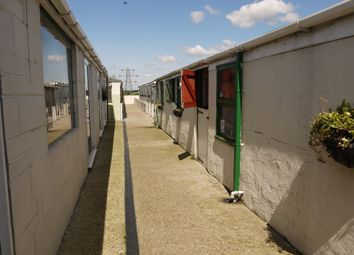 Thumbnail 3 bed property for sale in Kennels, Cattery & Equestrian Businesses S72, Shafton, Barnsley