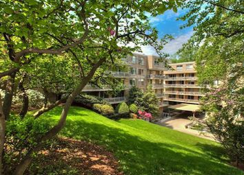 Thumbnail 2 bed property for sale in Washington, District Of Columbia, 20016, United States Of America