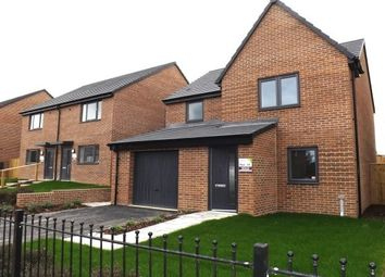 Thumbnail 3 bed detached house to rent in Emerald Green Grove, Rotherham