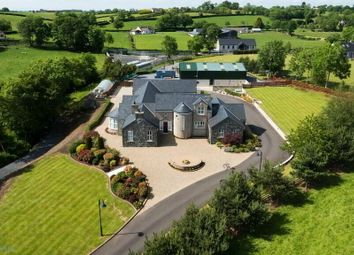 Thumbnail 4 bed country house for sale in Lurgan Road, Dromore