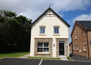 Thumbnail 3 bed detached house for sale in Bridgelea Avenue, Green Road, Conlig