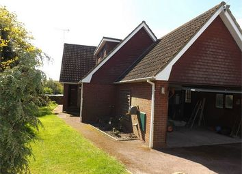 Thumbnail 3 bedroom detached house to rent in Camber Close, Bexhill-On-Sea, East Sussex