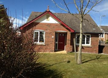 Thumbnail 2 bed bungalow to rent in Fern Grove, The Highlands, Whitehaven, Cumbria