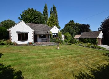 Thumbnail 2 bed detached bungalow for sale in Ivy Dene, Church Lane, Darley Abbey Village, Derby