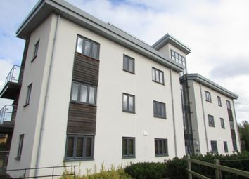 Thumbnail 2 bed flat to rent in Four Chimneys Crescent, Hampton Vale