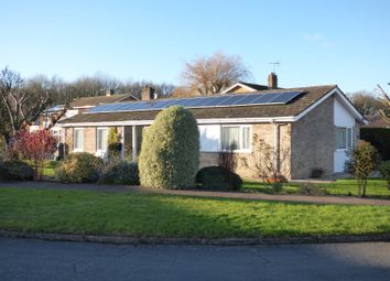 Thumbnail 4 bed detached bungalow for sale in Highland, Poringland