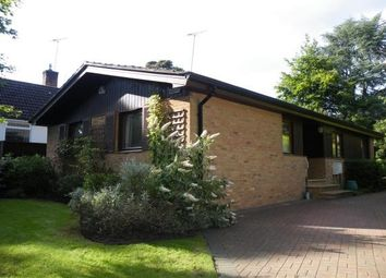 Thumbnail 3 bed bungalow to rent in Highclere Drive, Camberley