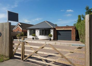 Thumbnail 4 bed detached house to rent in York Road, Elvington, York