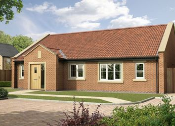 Thumbnail 3 bed detached bungalow for sale in The Elm, Nursery Gardens, Stannington, Morpeth