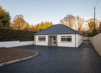 Thumbnail 3 bed detached house for sale in 47, Grahamsbridge Road, Belfast