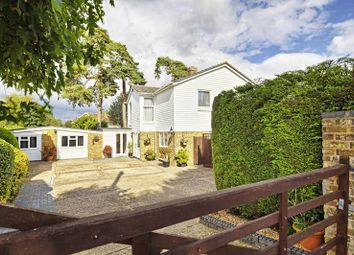 Thumbnail 5 bed detached house for sale in Park Lane, Puckeridge, Ware