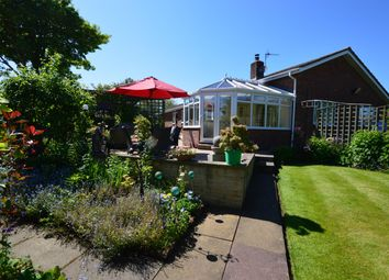 Thumbnail 4 bed detached bungalow for sale in Malton Road, Hunmanby, Filey
