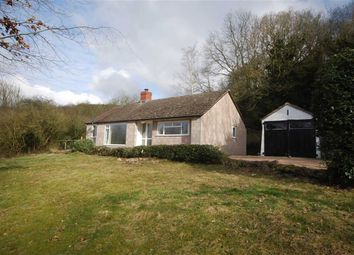 Thumbnail 2 bed detached bungalow to rent in Hereford Road, Nr Malvern, Worcestershire