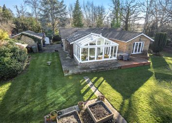 Thumbnail 4 bedroom detached bungalow for sale in Forest Road, Hayley Green, Bracknell, Berkshire