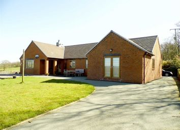 Thumbnail 3 bed detached bungalow for sale in Brynllywarch, Llanerfyl, Welshpool, Powys