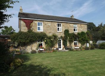 Thumbnail 4 bed detached house for sale in Felton, Morpeth
