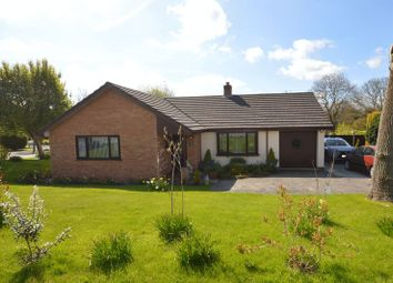 Thumbnail 3 bed detached bungalow for sale in Lixwm, Holywell