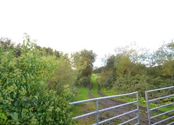Thumbnail Property for sale in Annagh Bog, Churchtown, Cork