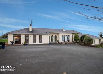 Thumbnail 6 bed detached bungalow for sale in Myra Road, Strangford, County Down