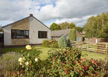 Thumbnail 3 bed detached bungalow to rent in Willow Close, Penrith