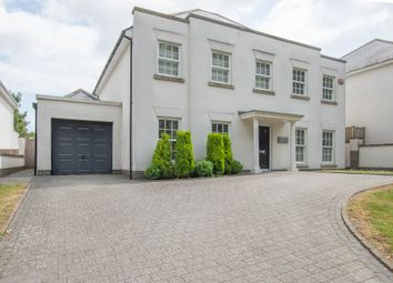 Thumbnail 4 bed detached house for sale in Sandwich Road, Whitfield