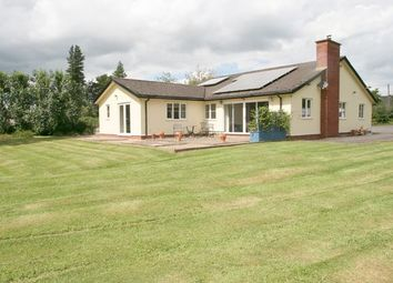 Thumbnail 4 bed detached bungalow for sale in Shillingford, Tiverton