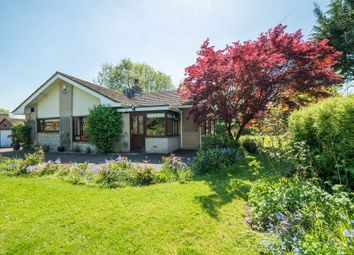 Thumbnail 3 bed detached bungalow for sale in Bressingham Road, Roydon, Diss