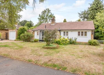 Thumbnail 3 bed detached bungalow to rent in Eastwick Road, Burwood Park, Hersham, Walton-On-Thames