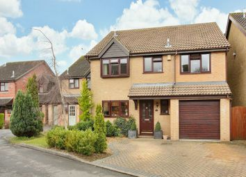 Thumbnail 4 bed detached house for sale in Loveridge Close, Andover