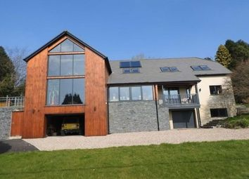 Thumbnail 5 bed property to rent in Llechryd, Cardigan