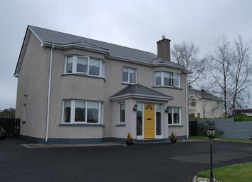 Thumbnail 4 bed property for sale in Ballymore, Ballymore, Westmeath