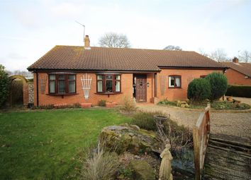 Thumbnail 3 bed bungalow for sale in Old Southwood Road, Beighton, Norwich