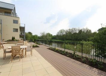 Thumbnail 1 bed flat for sale in Bowles Court, Westmead Lane, Chippenham, Wiltshire