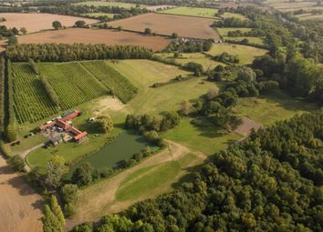 Thumbnail Land for sale in Green Lane, Boxted, Colchester