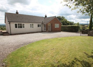 Thumbnail 3 bed detached bungalow to rent in Lindisfarne, Culgaith, Penrith, Cumbria