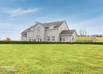 Thumbnail 4 bedroom detached house for sale in Sersons Road, Magherafelt, County Londonderry