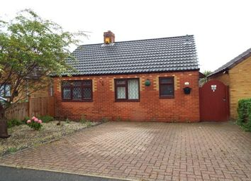 Thumbnail 2 bed bungalow to rent in Devonshire Close, Huthwaite