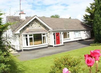 Thumbnail 6 bed bungalow for sale in Williamstown, Kells, Co. Meath