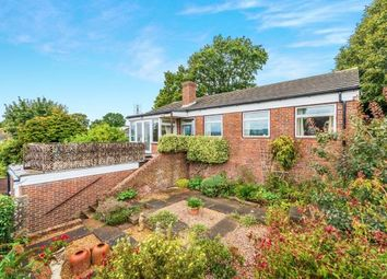 Thumbnail 2 bed bungalow for sale in Southside, Pulborough, West Sussex