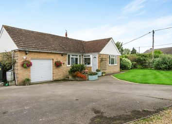 Thumbnail 4 bedroom bungalow for sale in College Arms Close, Stour Row, Shaftesbury