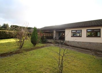 Thumbnail 3 bedroom bungalow for sale in Slamannan Road, Limerigg, Falkirk