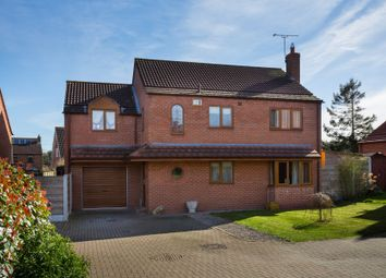 Thumbnail 4 bedroom detached house for sale in The Orchard, Tholthorpe, York
