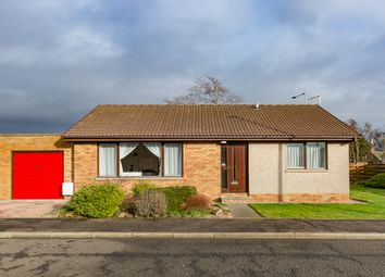 Thumbnail 3 bedroom bungalow for sale in Dunrossie Terrace, Montrose