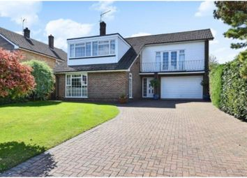 Thumbnail 4 bed detached house for sale in Brimstone Close, Orpington