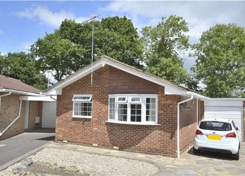 Thumbnail 2 bed detached bungalow for sale in Charlotte Grove, Smallfield, Horley